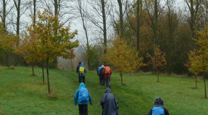 Saturday 14th November. Paddock Wood circular