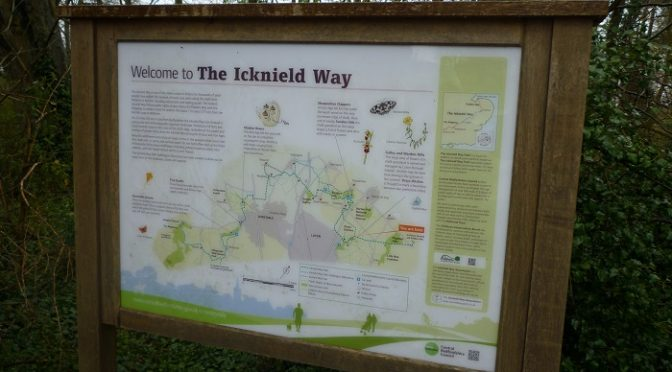 Saturday 16 April: Icknield Way Streatley to Letchworth