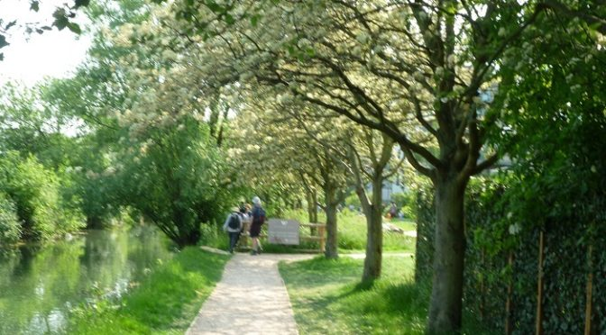 Sunday 5 June: Capital Ring Sections 11 and 12 with the London Blind Ramblers