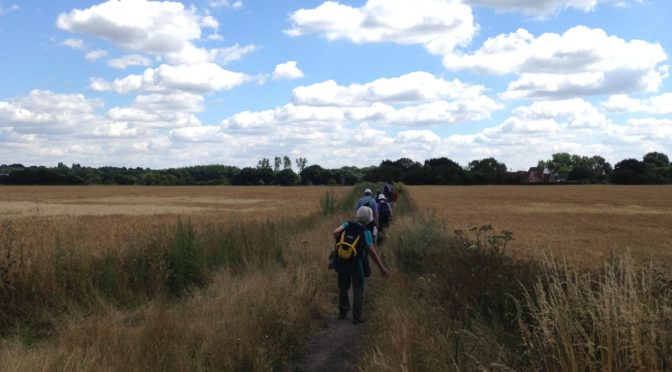 Saturday 6 August: St Albans to Hatfield along the Alban Way