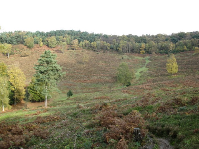 devils_punch_bowl_hindhead_common_-_geograph-org-uk_-_1562464