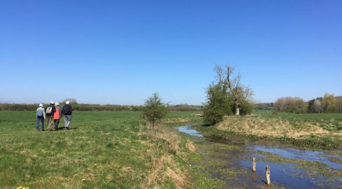 Saturday 8 April: Source of the Thames