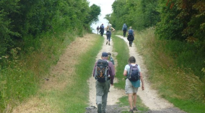 SATURDAY/SUNDAY 28/29th: ICKNIELD WAY STAGE SEVEN: DULLINGHAM to ICKLINGHAM (LINEAR)