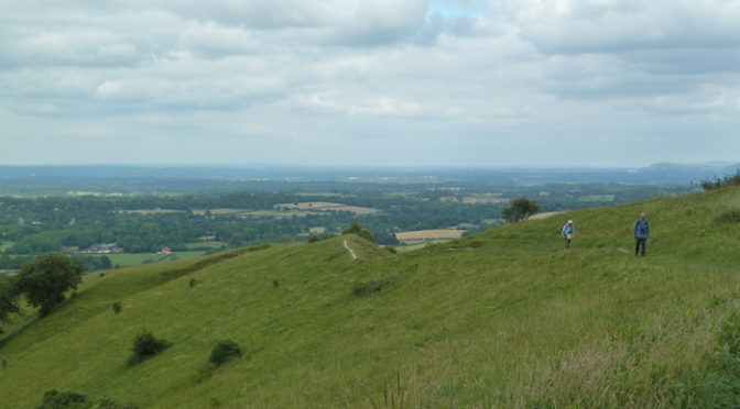 Saturday 1st July. Amberley circular