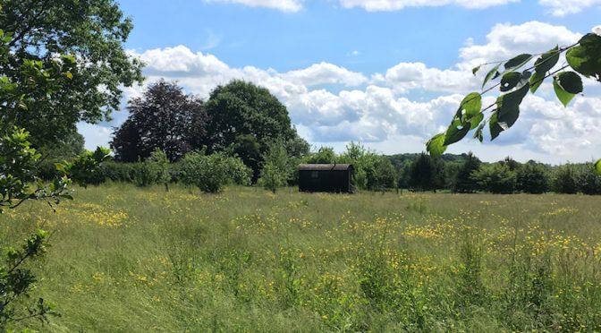 Saturday 2nd June. Penshurst area (Kent)  circular.