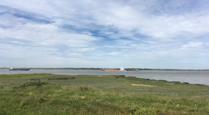 Saturday 23 June 2018: Saxon Shore Way (1) – Gravesend to High Halstow (Linear)