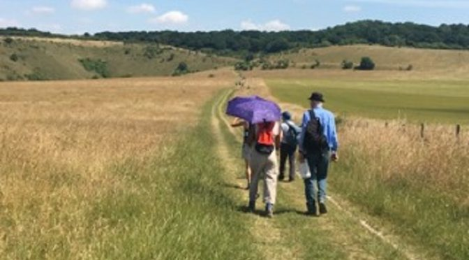 Tring to Berkhamsted: 7 July
