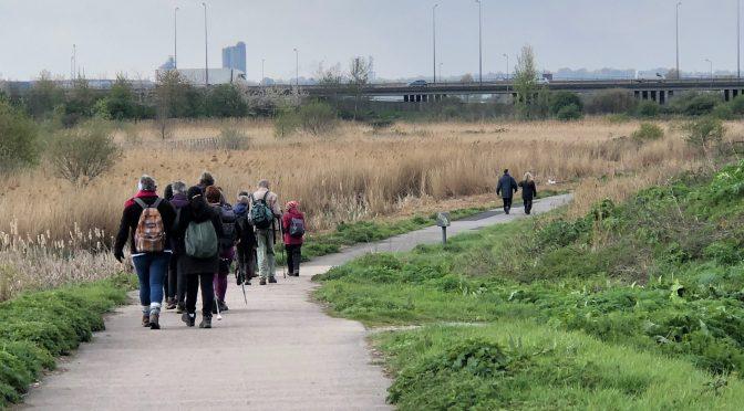 Sunday 14th April Rainham to Rainham Marshes
