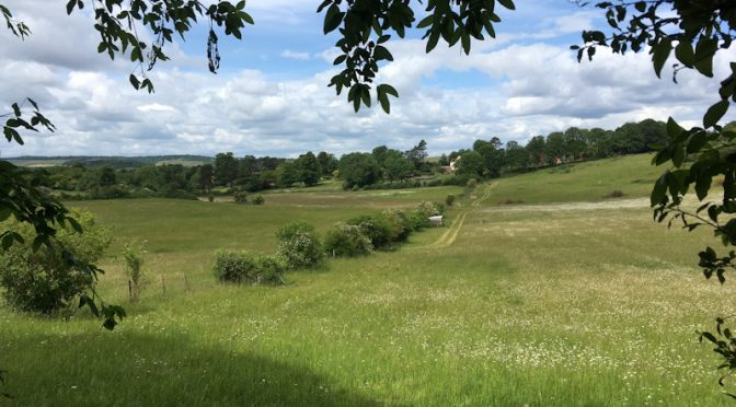 SUNDAY 9th June: GORING to PANGBOURNE (LINEAR):