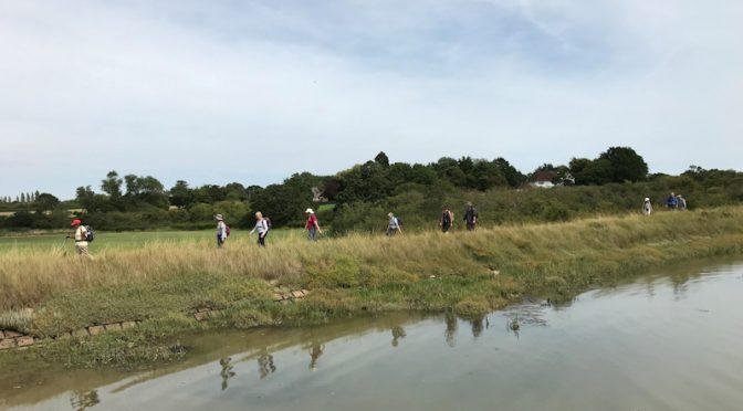 SATURDAY August 3rd: SOUTHMINSTER to N. FAMBRIDGE (Essex) (LINEAR)