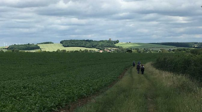 SATURDAY 24th/25th: ICKNIELD WAY STAGE SIX: GT. CHESTERFORD to DULLINGHAM (LINEAR) W/E