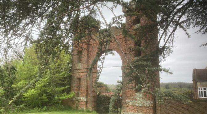 HADLEY WOOD TO BROOKMANS PARK – 8 MAY